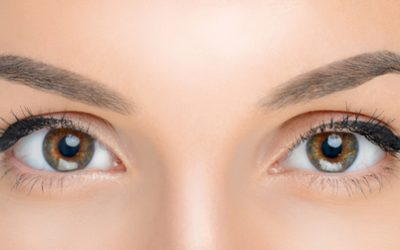 Eye Brow and Lash Treatments